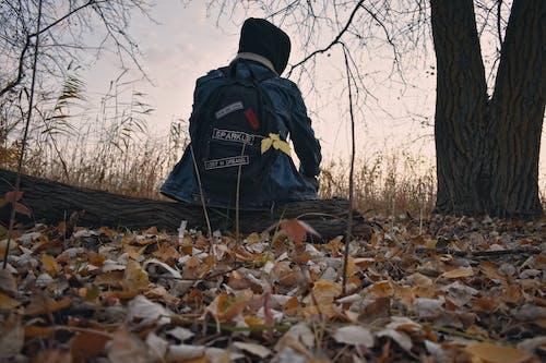 Δωρεάν στοκ φωτογραφιών με άνδρας, δάσος του φθινοπώρου, σακίδιο πλάτης