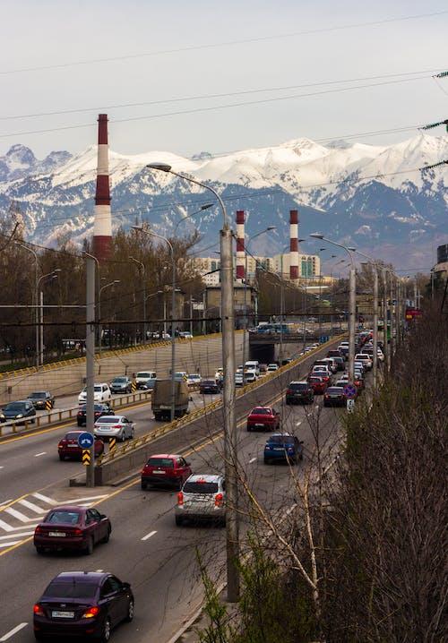 Gratis lagerfoto af almaty, by, trafik