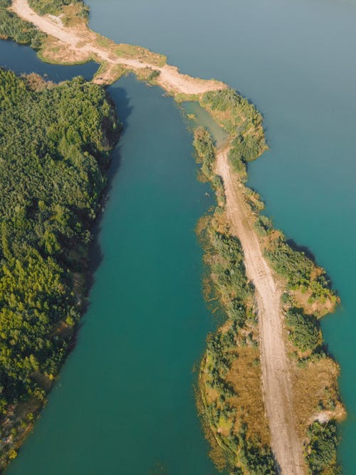 Aerial View of Green Trees and River