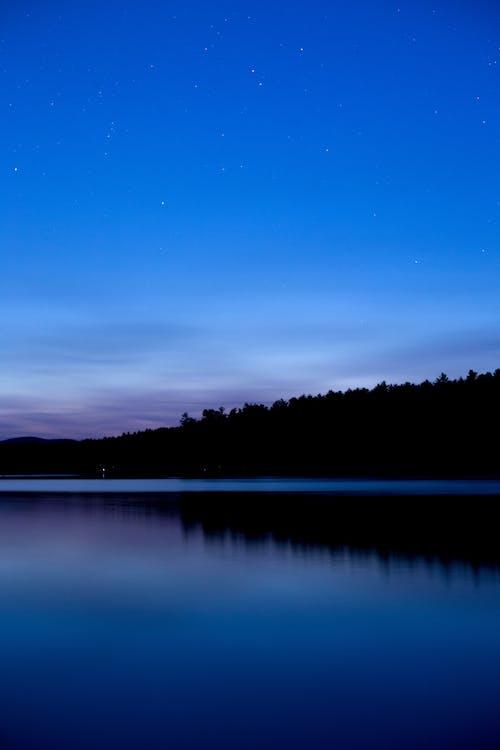 Kostenloses Stock Foto zu bäume, dunkel, himmel, nacht