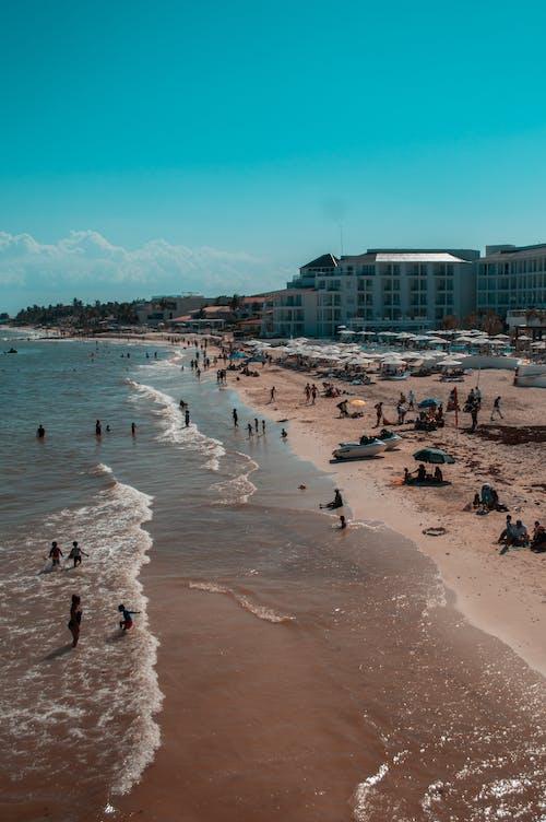 尼康, 橙色和青色, 沙灘, 海洋 的 免費圖庫相片