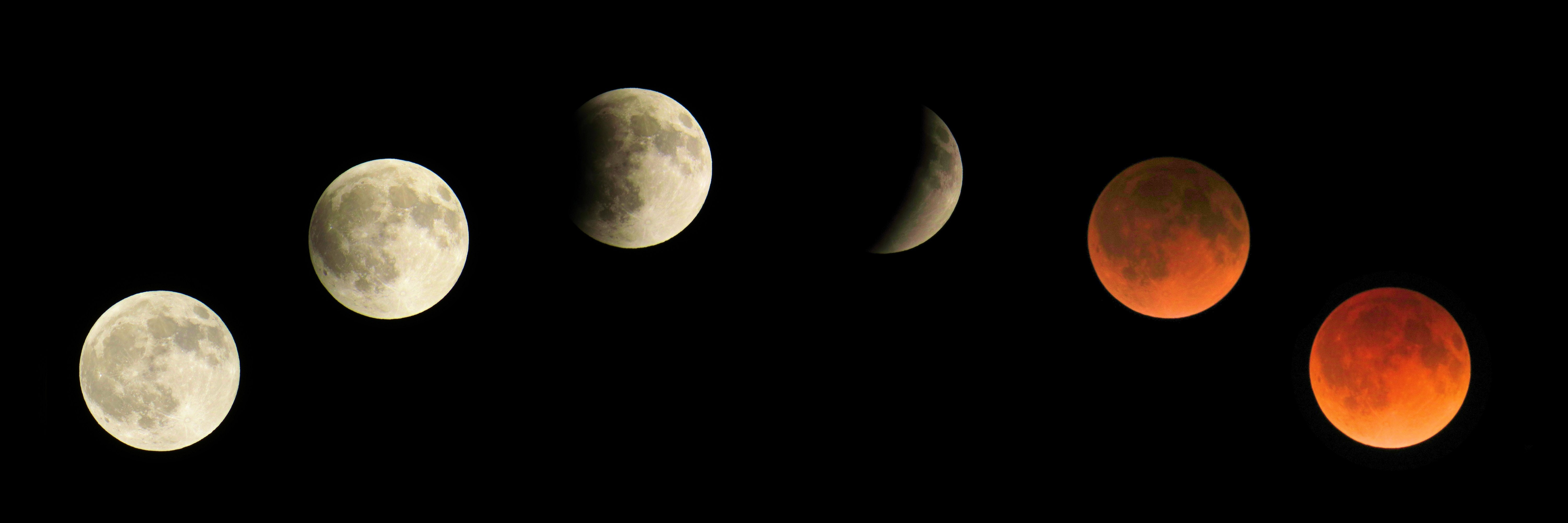 Free stock photo of blood moon, eclipse, full moon