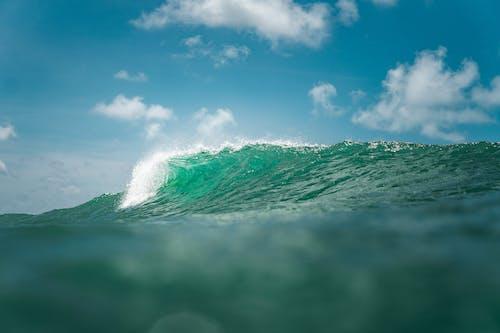 Landscape of Sea Waves