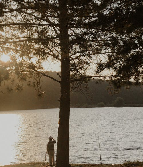 Free stock photo of alone, cold, dawn