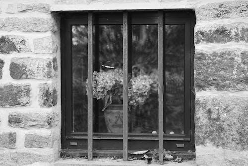Darmowe zdjęcie z galerii z architektura, barreaux, detale, fenetre
