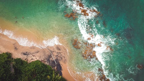 Бесплатное стоковое фото с вода, волны, всплеск, деревья