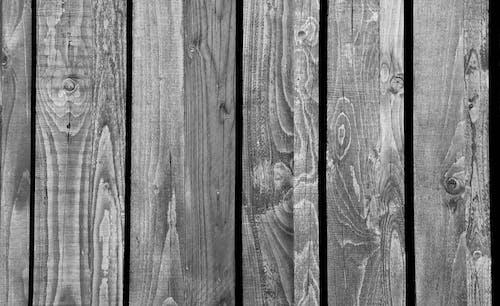 Gratis lagerfoto af blødt træ, hårdt træ, materiale, ru