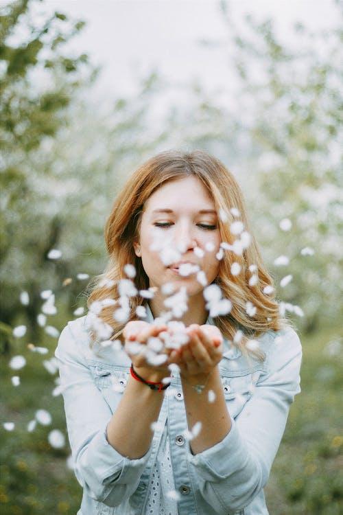 Gratis stockfoto met blazen, bloeiend, bloemblaadjes