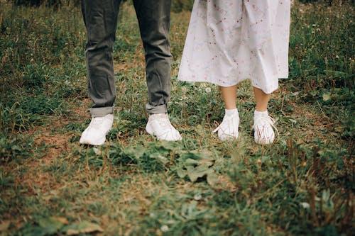 Fotos de stock gratuitas de al aire libre, amor, blanco