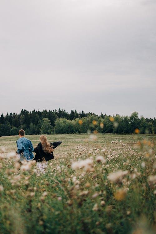 Fotos de stock gratuitas de al aire libre, amor, corriendo