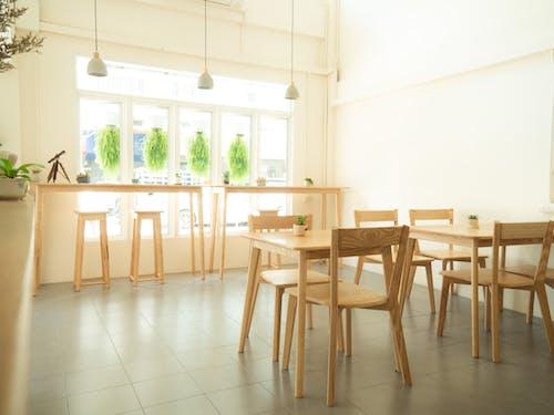 Immagine gratuita di interni, sedia di legno, vetrine