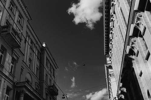 アート, シティ, ダウンタウンの無料の写真素材