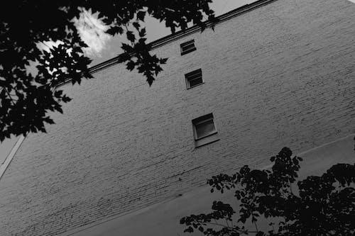 シティ, 人, 光の無料の写真素材