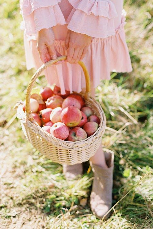 Woman Holding Apple Basket