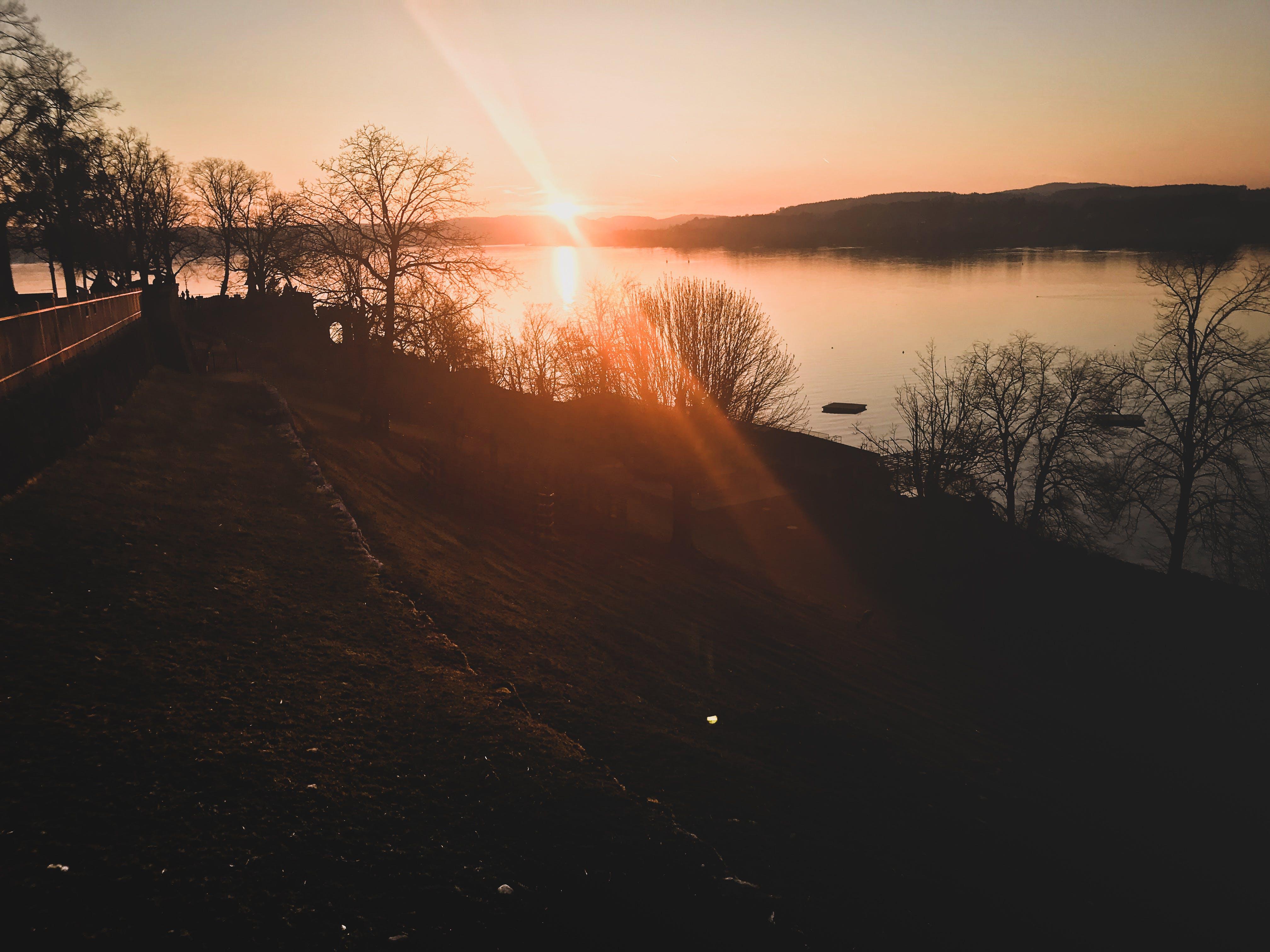 Free stock photo of sea, sunset, people, water
