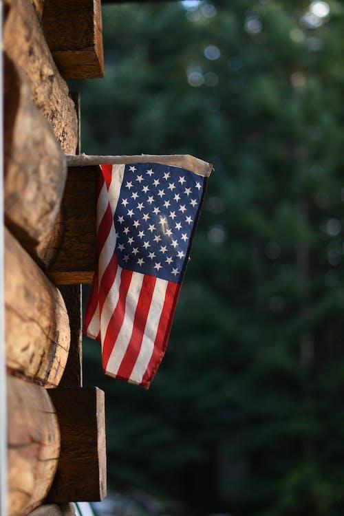 Foto profissional grátis de americana, americano, ao ar livre
