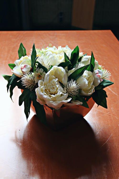 아름다운 꽃, 인테리어의 무료 스톡 사진