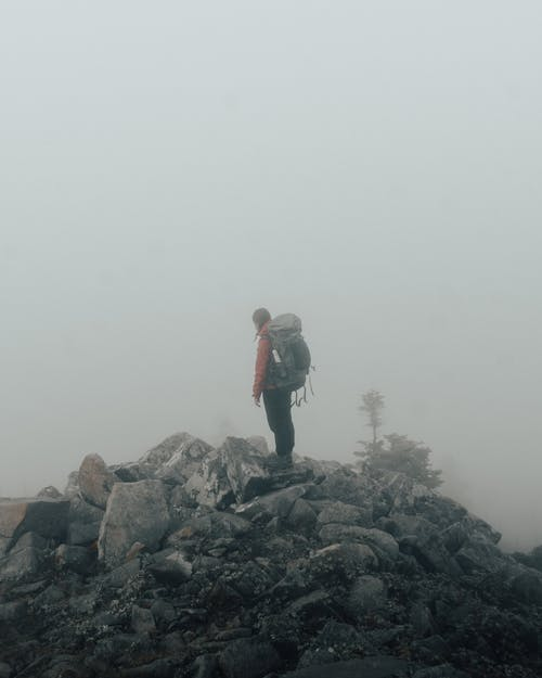 Photos gratuites de arbre, aride, aventure