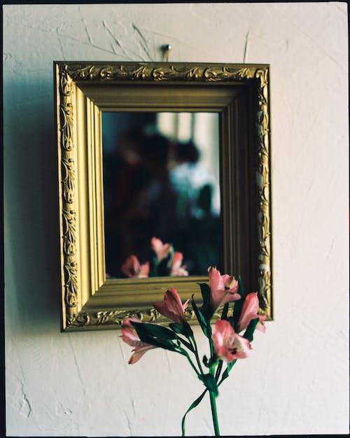 คลังภาพถ่ายฟรี ของ กรอบรูป, กระจกเงา, ก้านดอก