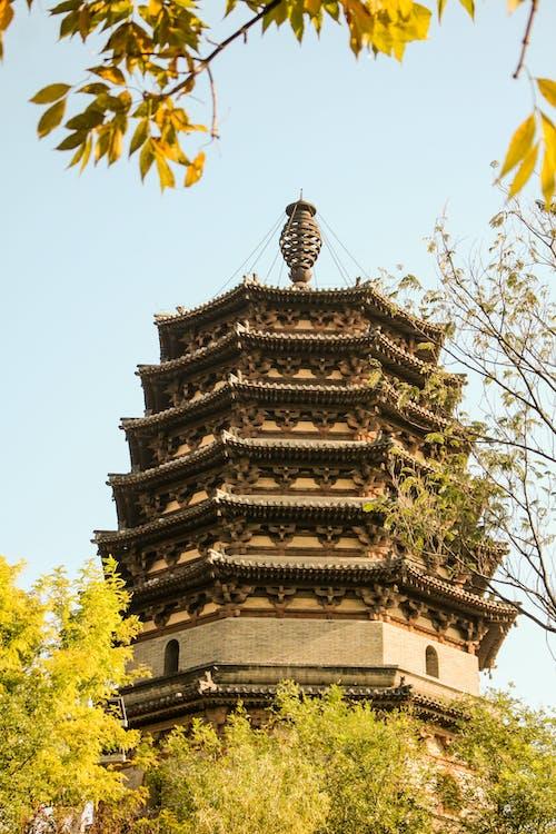 Δωρεάν στοκ φωτογραφιών με atmosfera de outono, shijiazhuang, αξιοθέατο