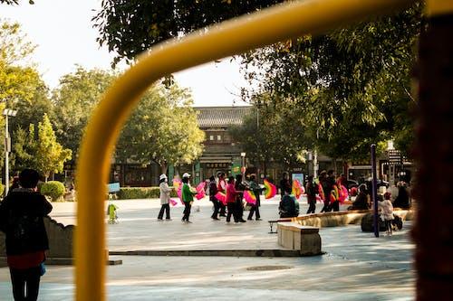 Δωρεάν στοκ φωτογραφιών με shijiazhuang, ειρηνική ζωή, ζωντανή γειτονιά