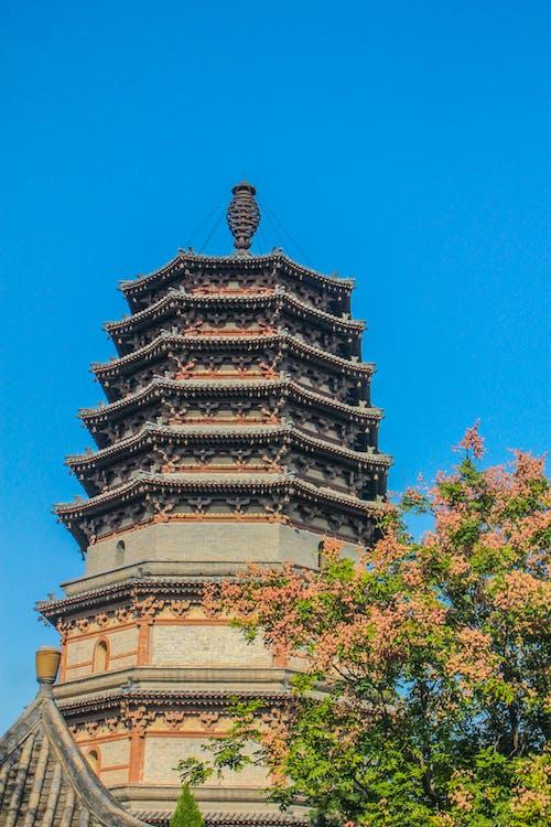 Δωρεάν στοκ φωτογραφιών με shijiazhuang, βουδισμός, ειρηνική ζωή