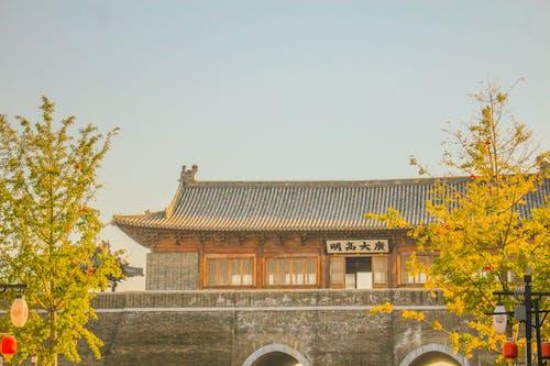 Δωρεάν στοκ φωτογραφιών με shijiazhuang, Κίνα, χεμπέι