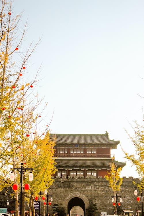 Δωρεάν στοκ φωτογραφιών με atmosfera de outono, shijiazhuang, Κίνα