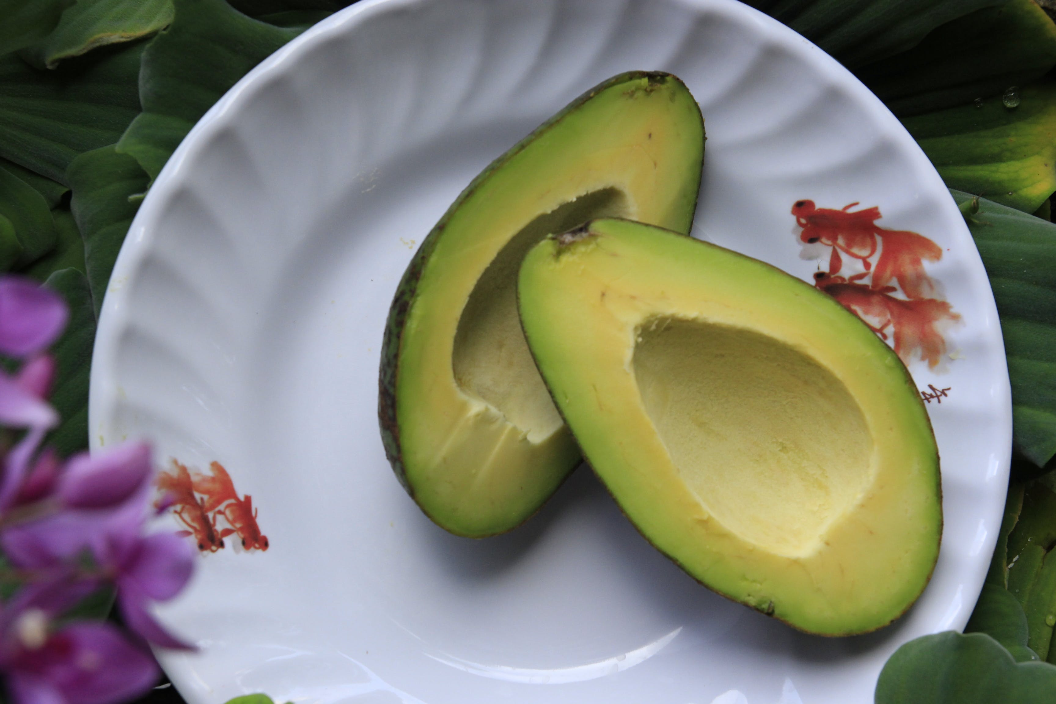 Sliced Avocado Fruits on Round White Ceramic Plate
