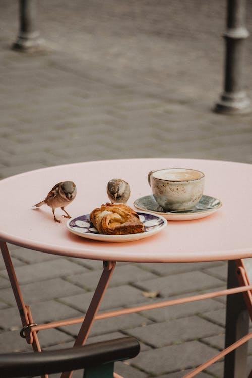 Birds Eating Leftover Food
