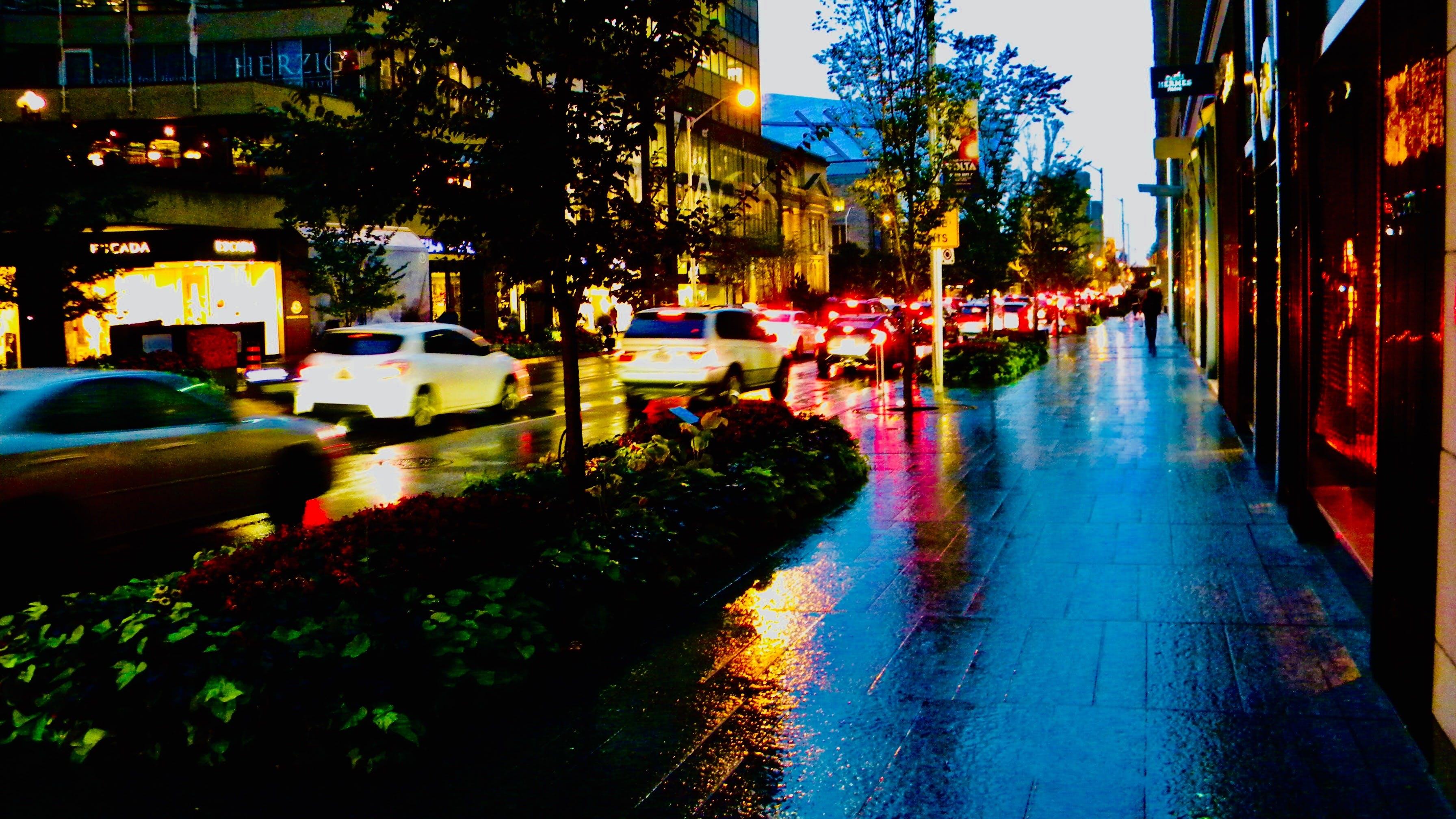 Free stock photo of after rain, architecture. city, autumn, autumn colours