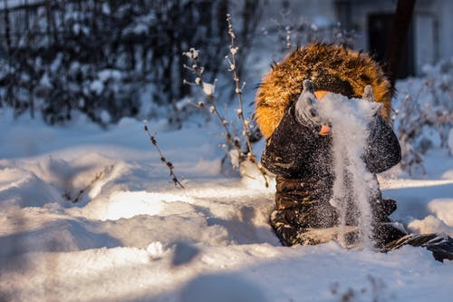 Gratis lagerfoto af dagslys, forkølelse, frossen, frost