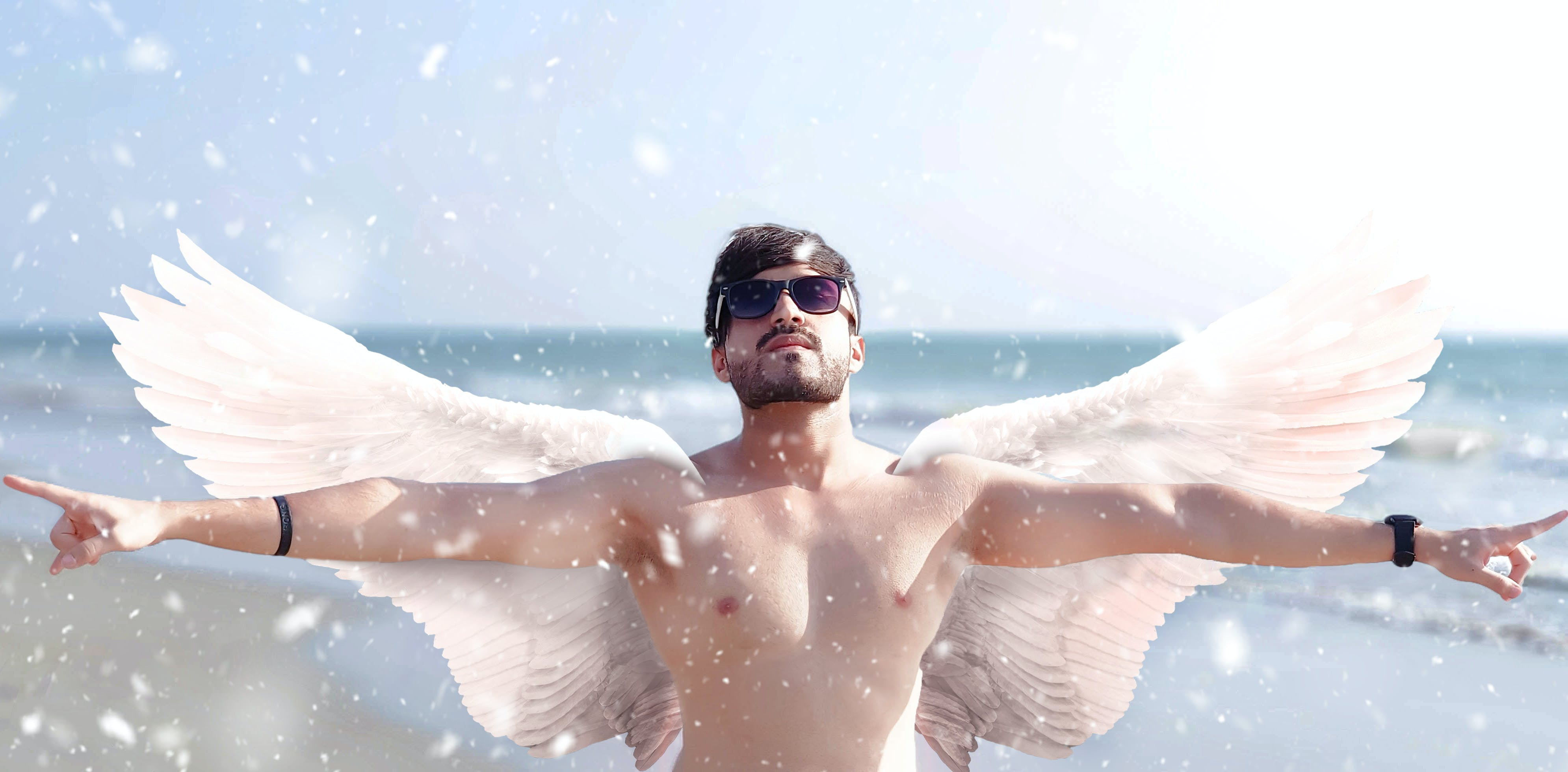 Free stock photo of angel, wings