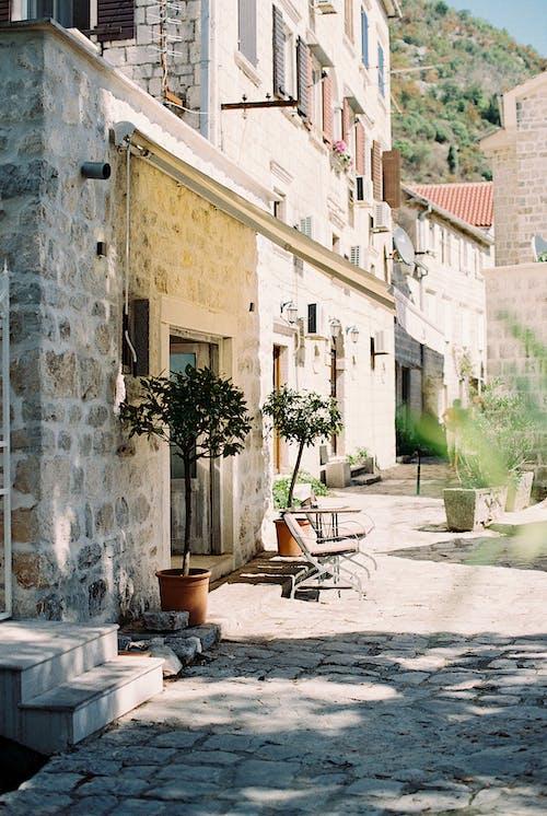 Imagine de stoc gratuită din aan lichtbak toevoegen, arhitectură, cafenea
