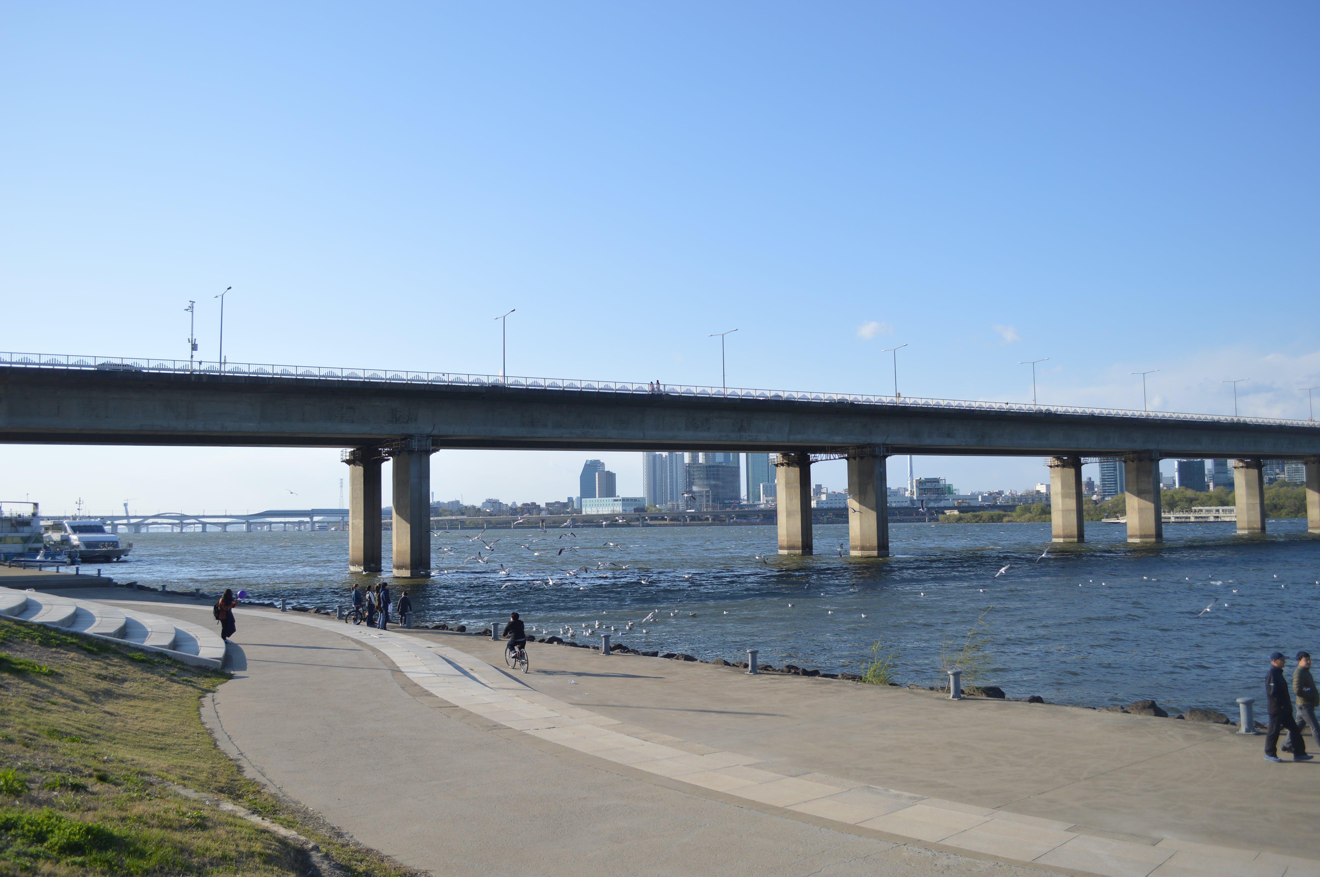Pathway Under Concrete Bridge