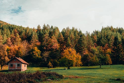 A Brick House on Green Field Surrounded by Forest During Autumn