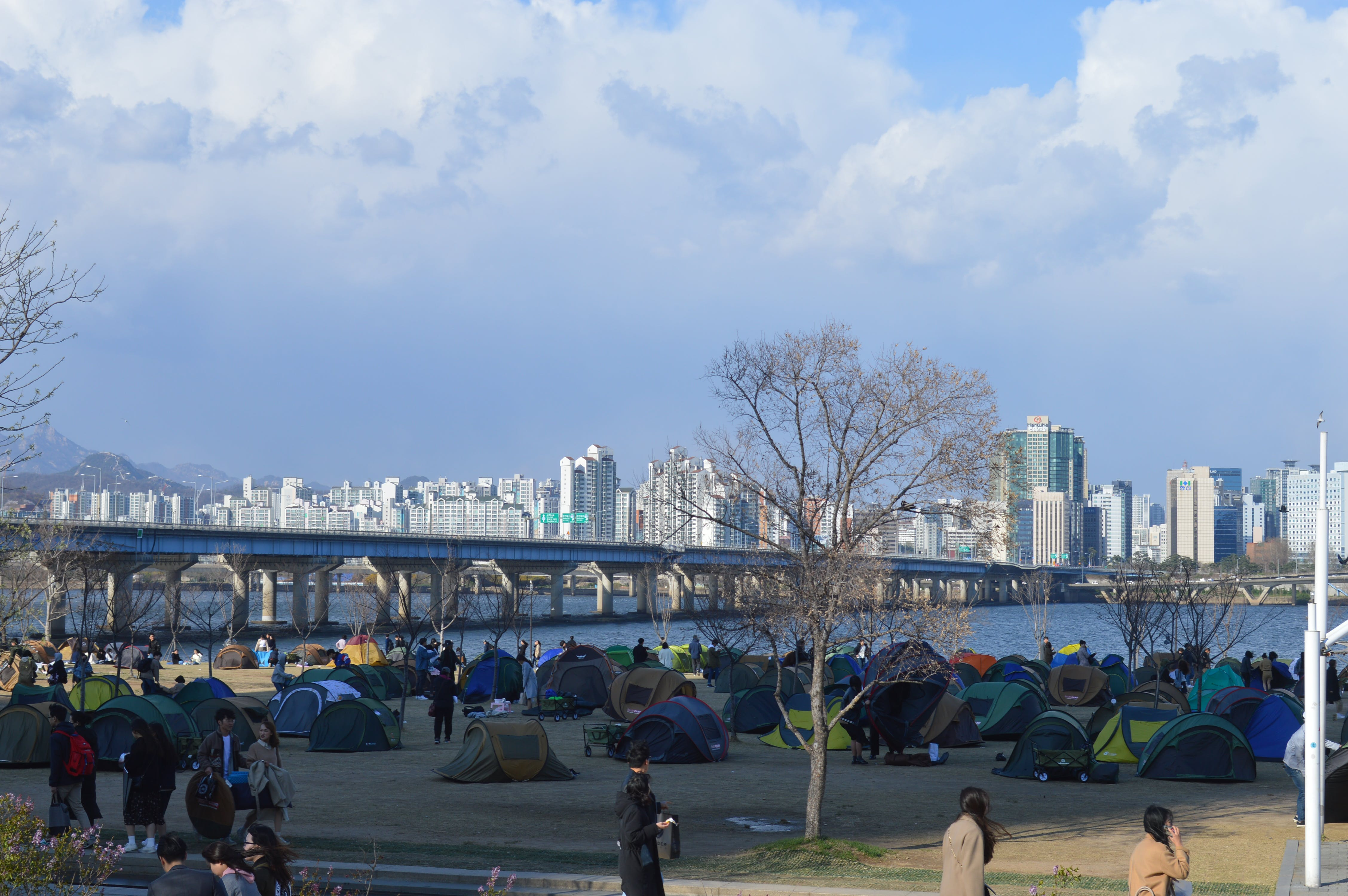 Free stock photo of han river