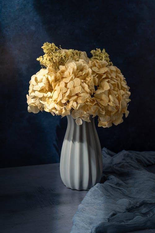 คลังภาพถ่ายฟรี ของ การถ่ายภาพหุ่นนิ่ง, ดอกไม้, ผ้า
