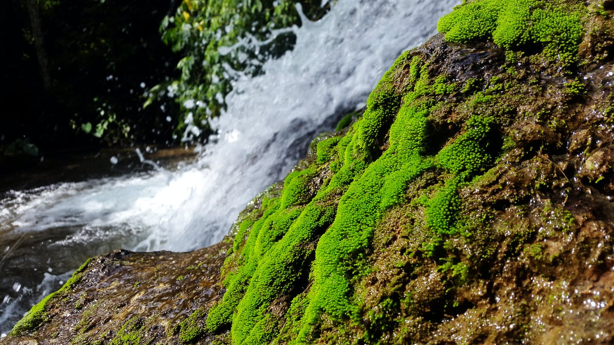 água, cachoeiras, cascata