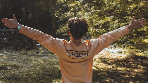 Free stock photo of fashion, forest, freedom