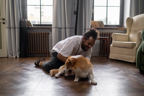 Man Playing with Dog on Floor