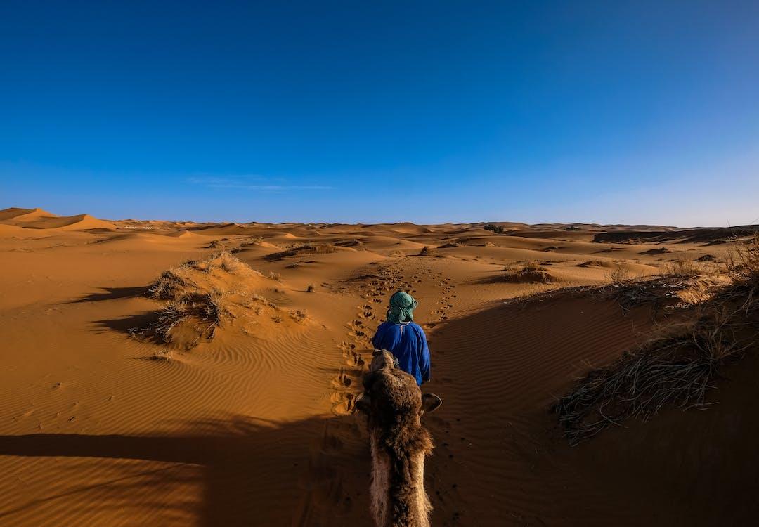 Man Wearing Blue Jacket Riding Camel Walking on Desert