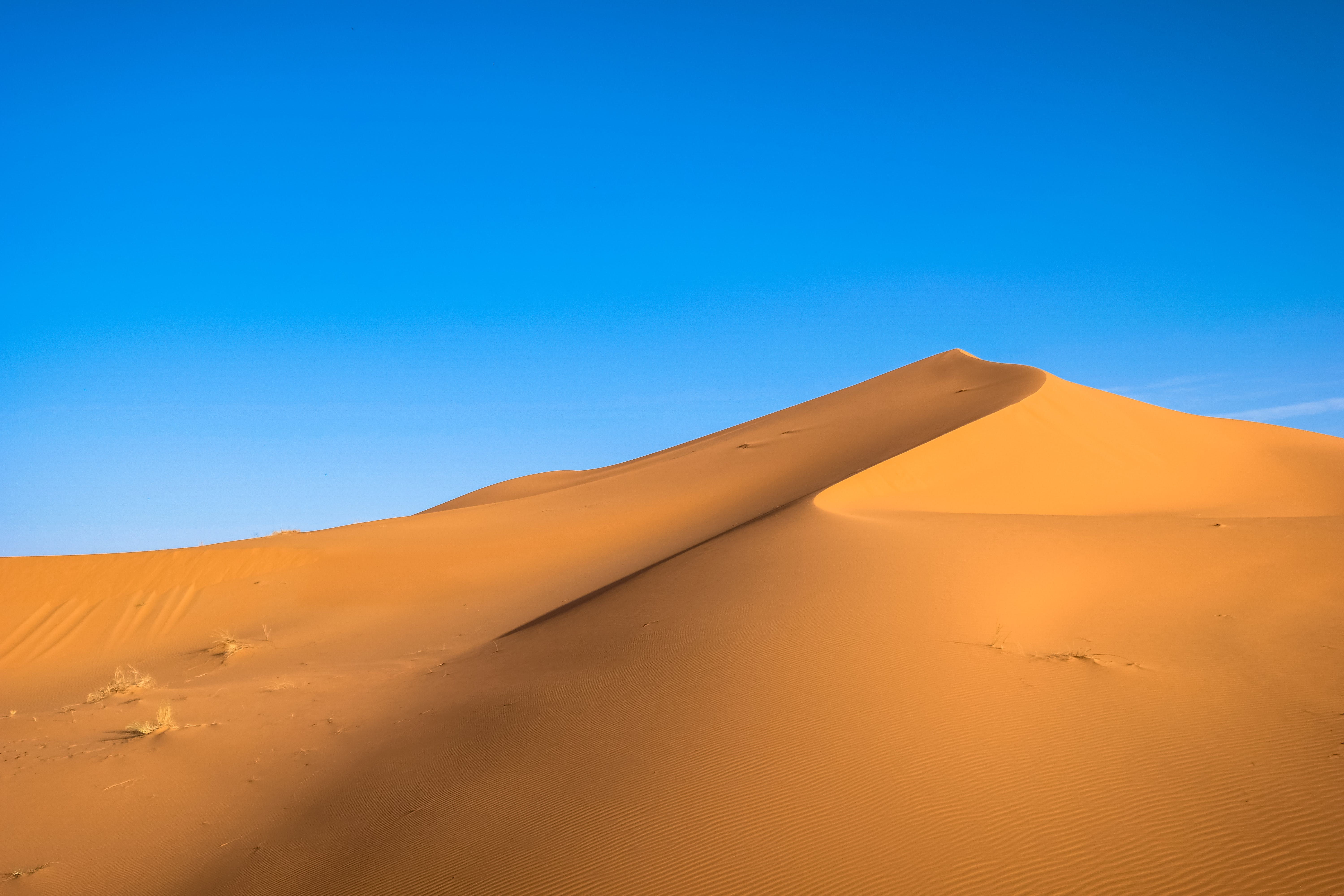 Photo of Brown Sand