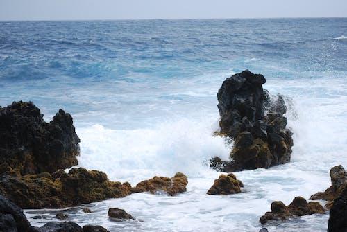 Foto stok gratis air, batu, batu besar, Batuan berlumut