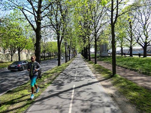 Kostnadsfri bild av dagsljus, gångstig, gata, gräs