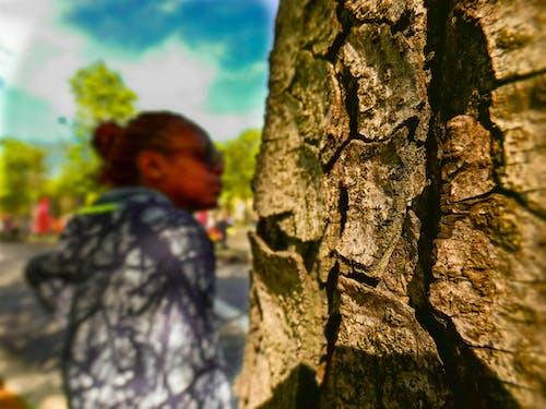 Kostnadsfri bild av bark, människor, moln, Mörka personer