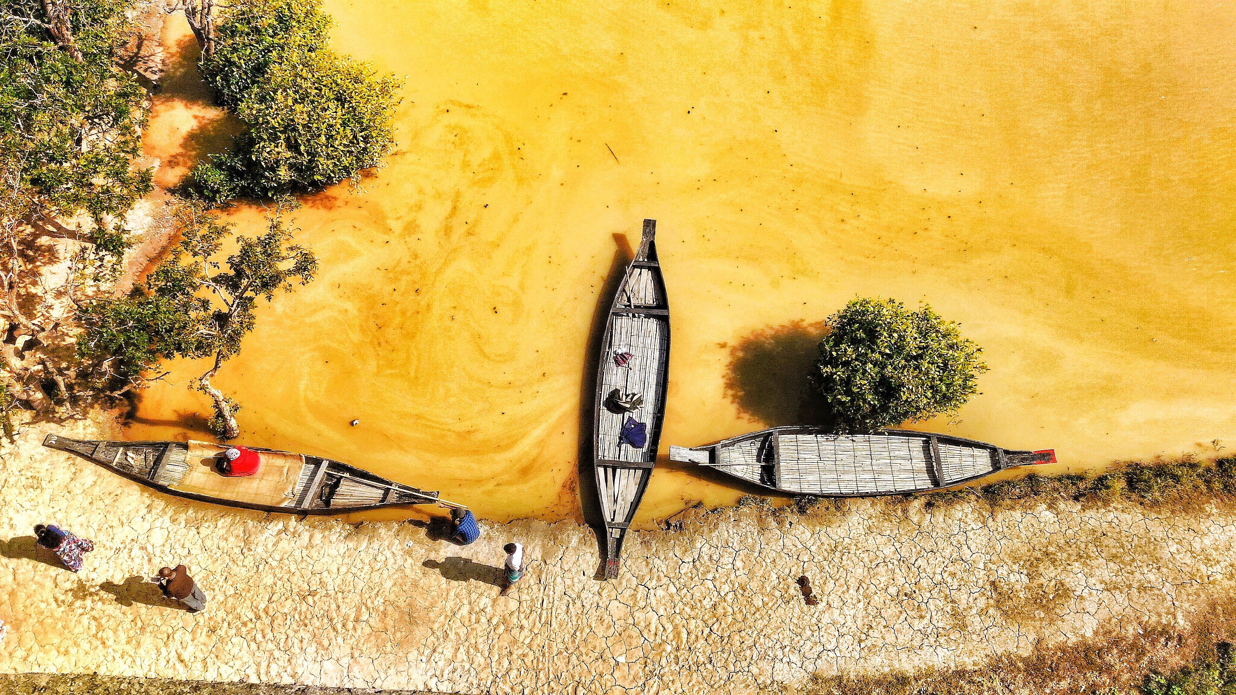 Canoes Near Shore