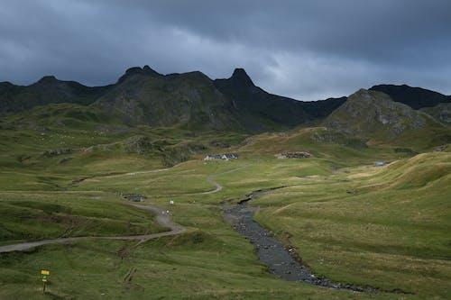 Stream in Mountain Landscape