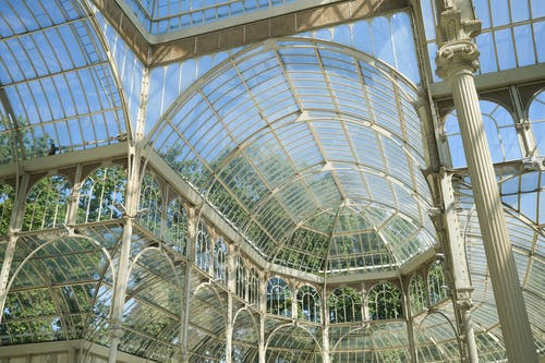 Glass Roof of Conservatory