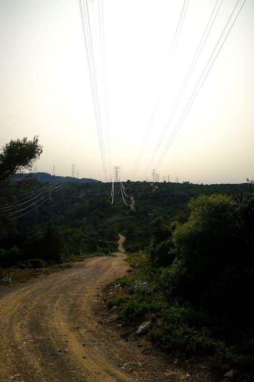Ingyenes stockfotó az utat, csökkenő perspektíva, elektromos vezeték témában